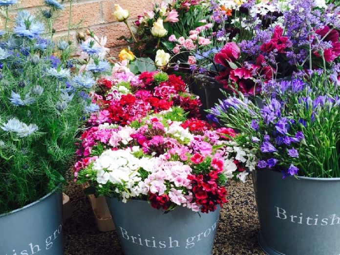 harroagte gardening and flower classes and workshops