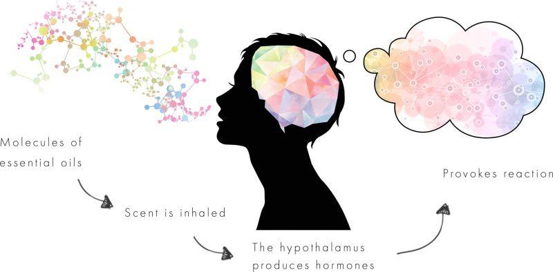 neom scent to provoke emotion
