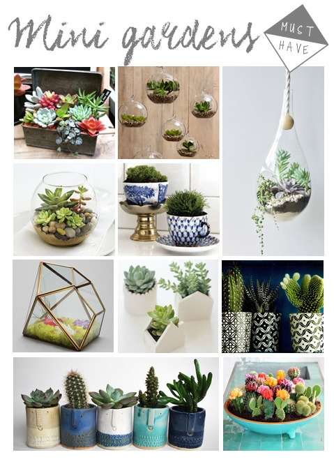 How To Make A Terrarium In Four Easy Steps The Harrogate Girl