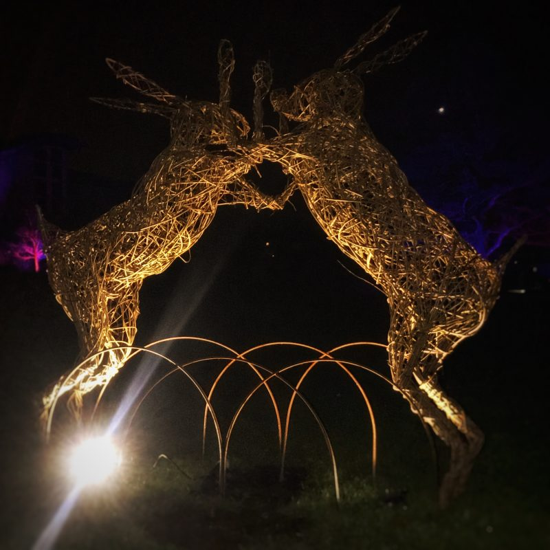 RHS Harlow Carr Garden GLOW family festival