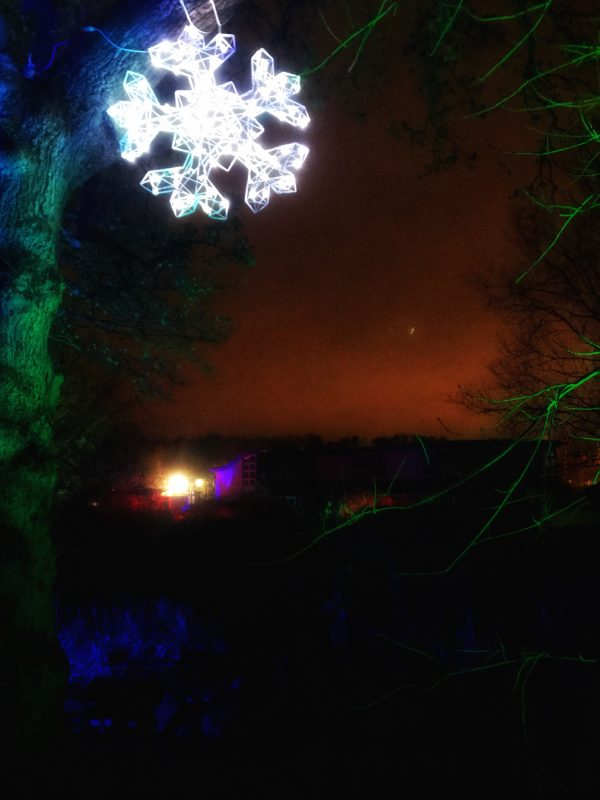 RHS Harlow Carr Garden GLOW christmas