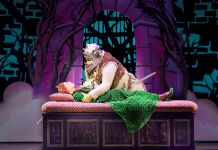 shrek the musical on tour