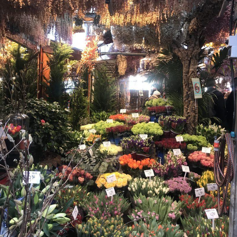 The Harrogate Girl Amsterdam Flower Market