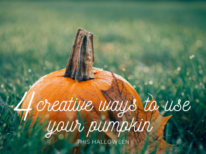 creative ays to use your pumpkin harrogate blog halloween