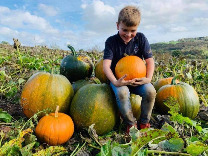 Autumn Activities Harrogate
